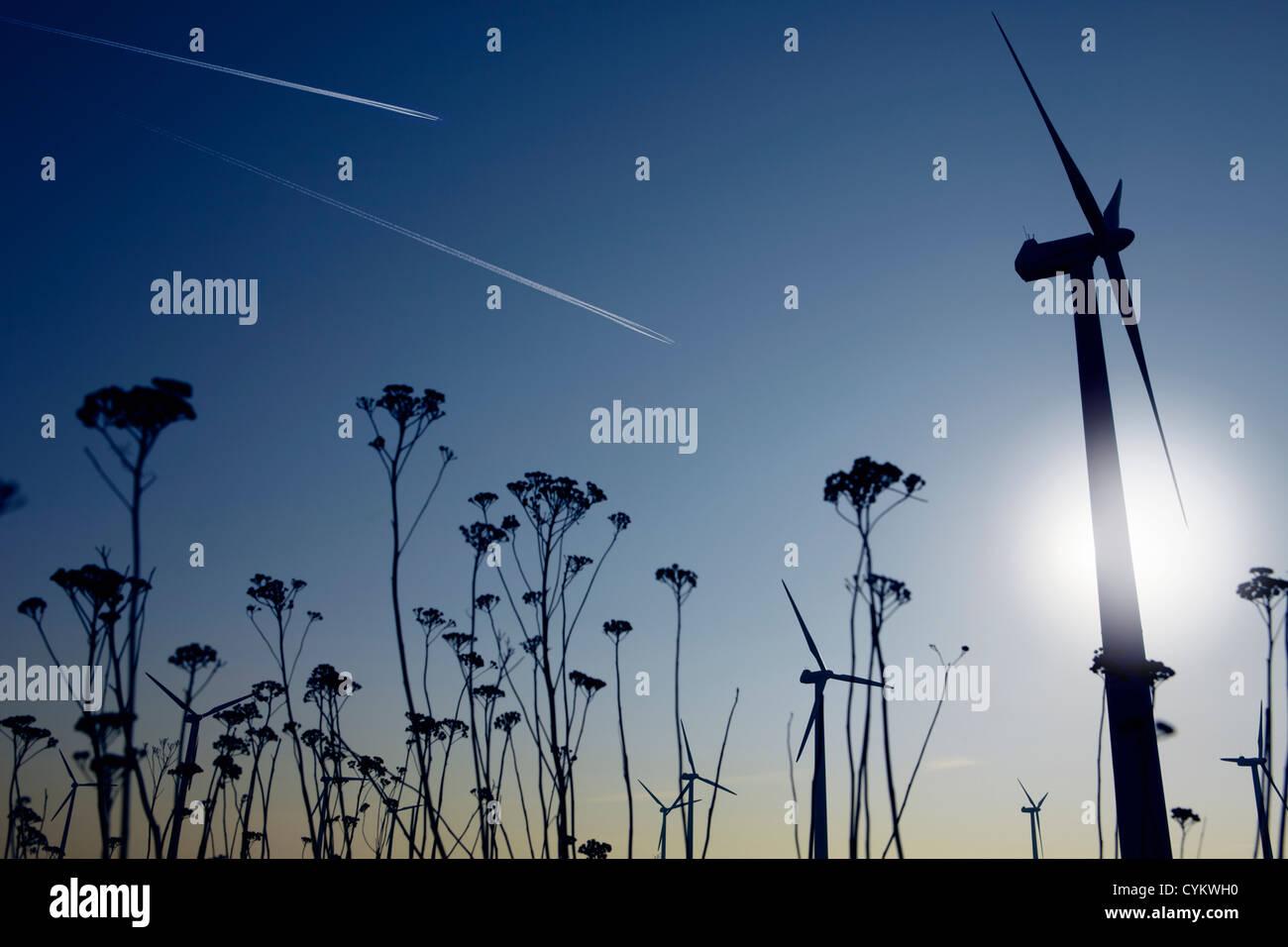 Silhouetten von Pflanzen und Windkraftanlagen Stockbild