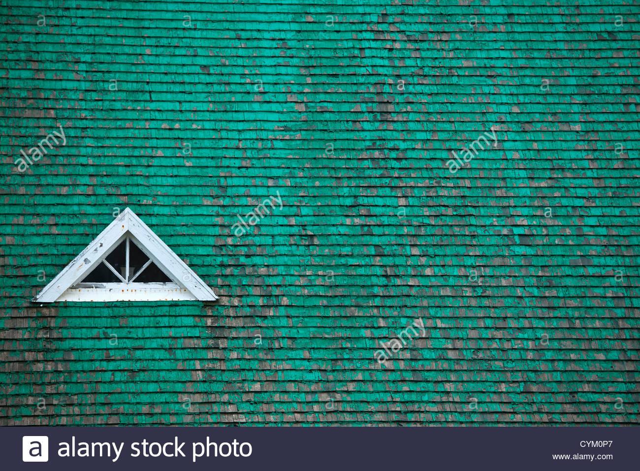 Fenster in Gründach Stockbild
