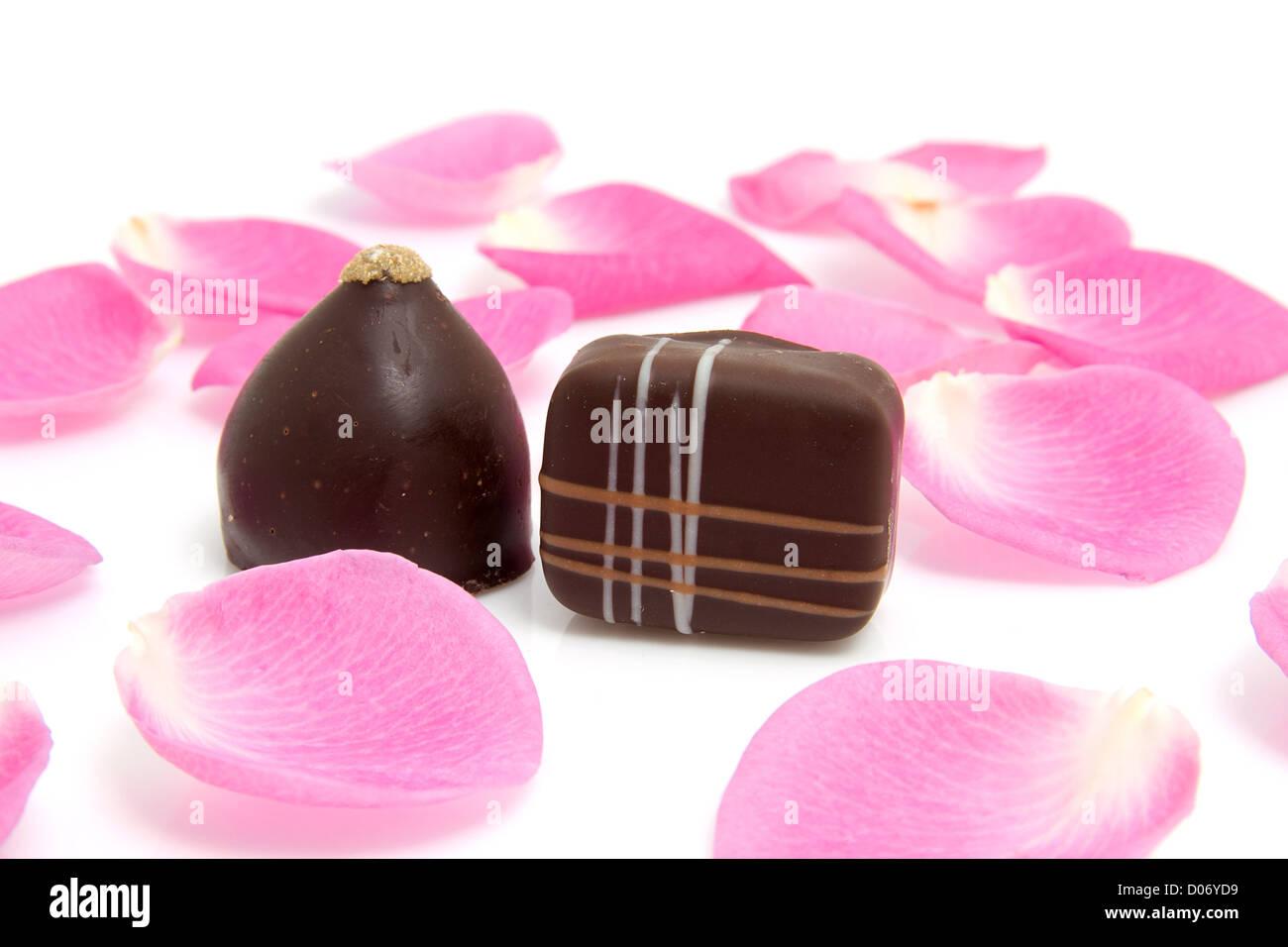 Rosa Rosenblätter mit Schokoladenbonbons zum Valentinstag auf weißem Hintergrund Stockbild