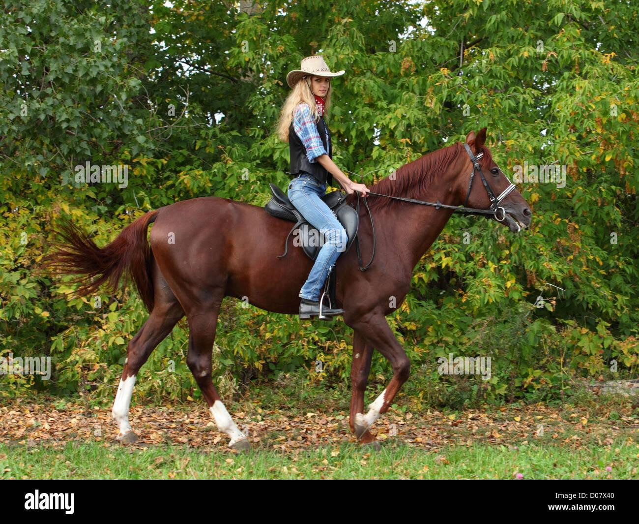 Glücklich Cowgirl auf braunen Pferd Stockfoto