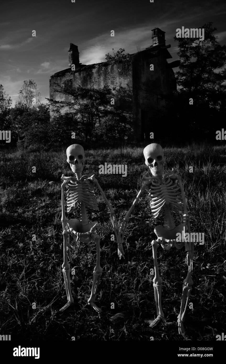 Italien. Skelette-paar Stockbild