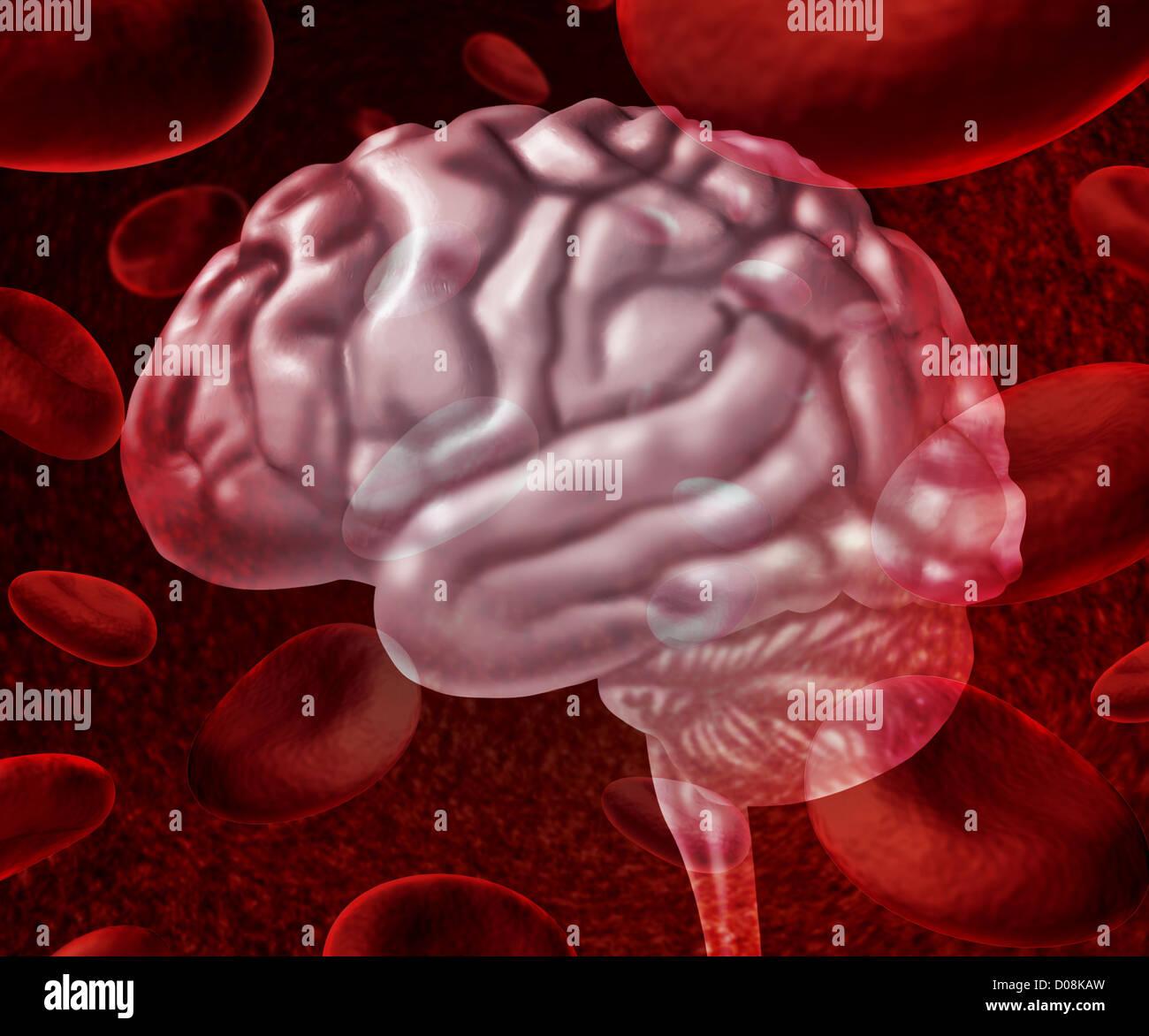 Gehirn Durchblutung als Zellen fließt durch die Adern und ...