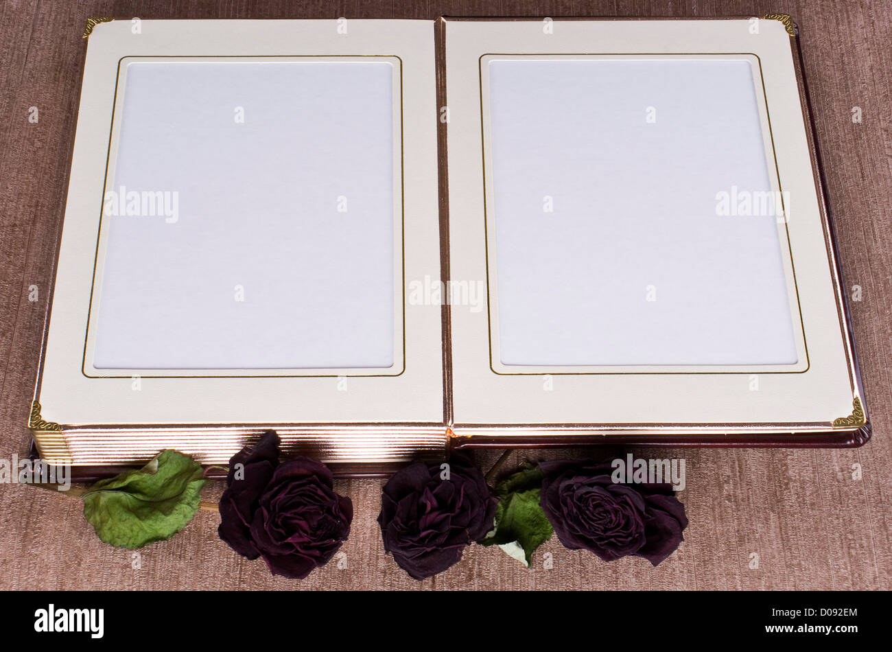 Offene altes Buch mit Gold gerahmt Seiten und getrocknete Rosen ...