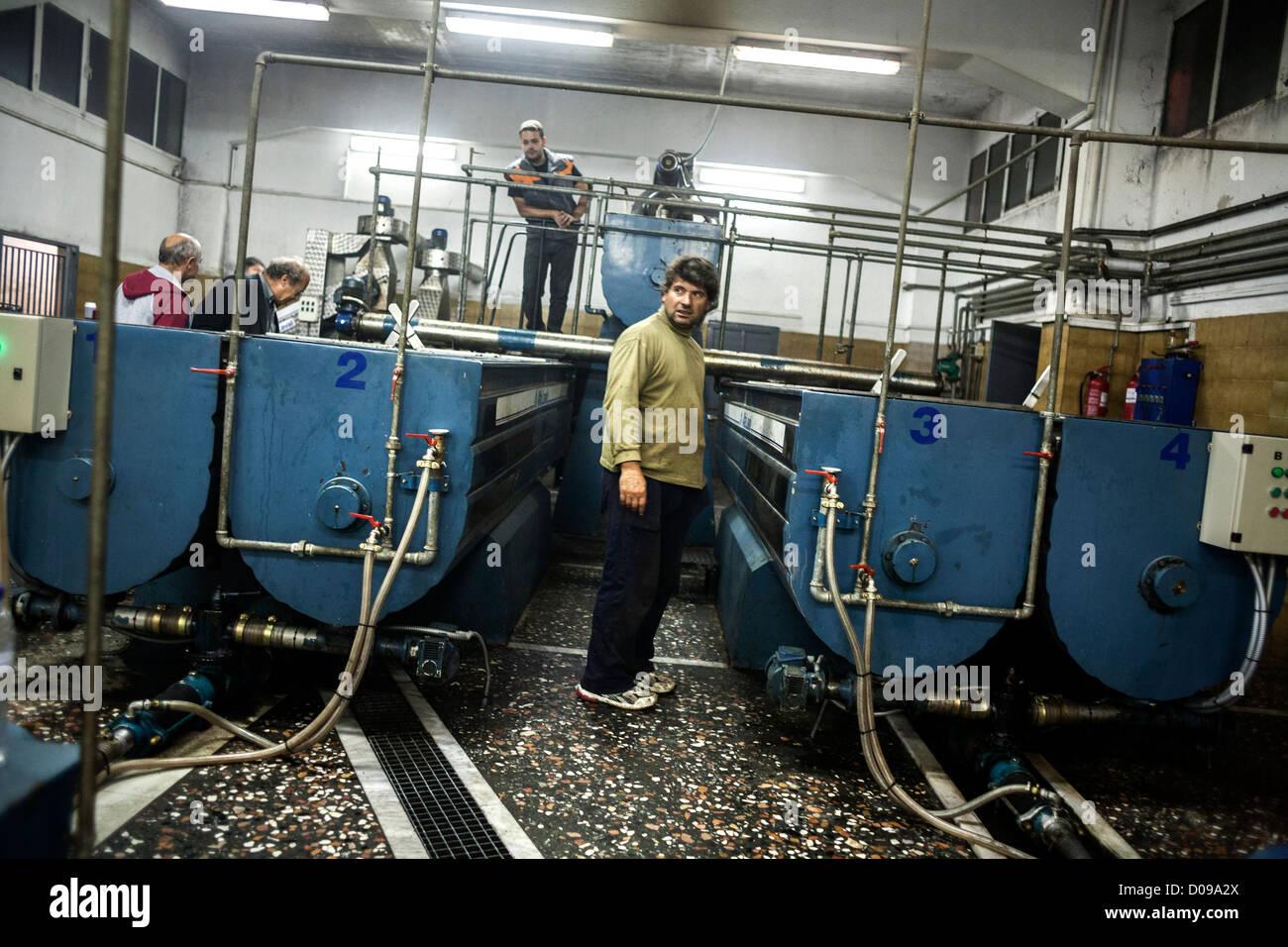 Olivenöl-Hersteller sieht den Produktionsprozess sein eigenes Olivenöl. Griechenland Stockbild