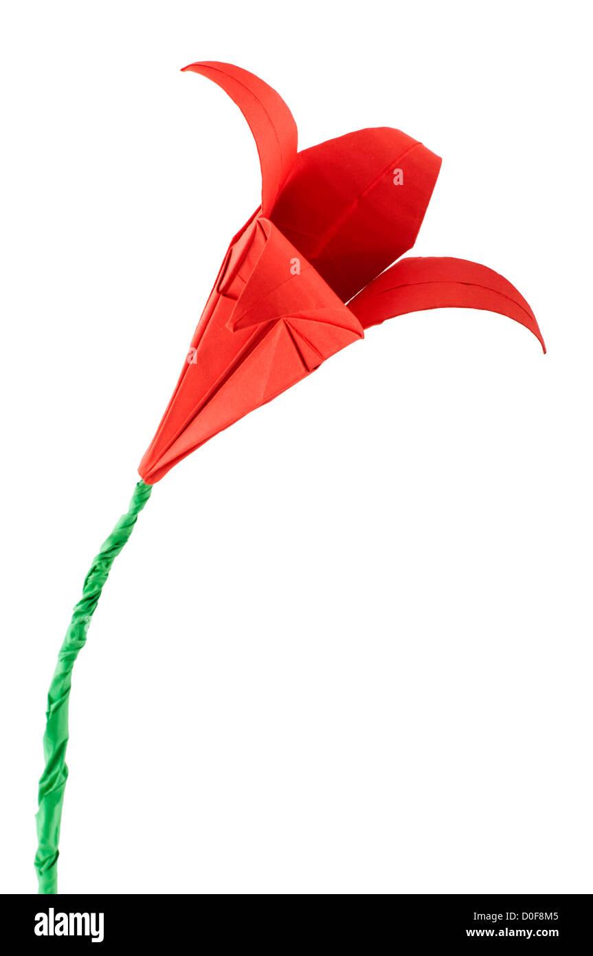 Rote Blume Origami weißen isoliert. Papier hergestellt Blumen. Stockfoto