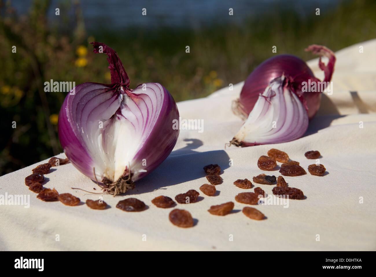 rote Zwiebeln (Cipolle di Tropea) und Rosinen auf einer weißen Tischdecke an einem sonnigen Tag an den Ufern Stockbild