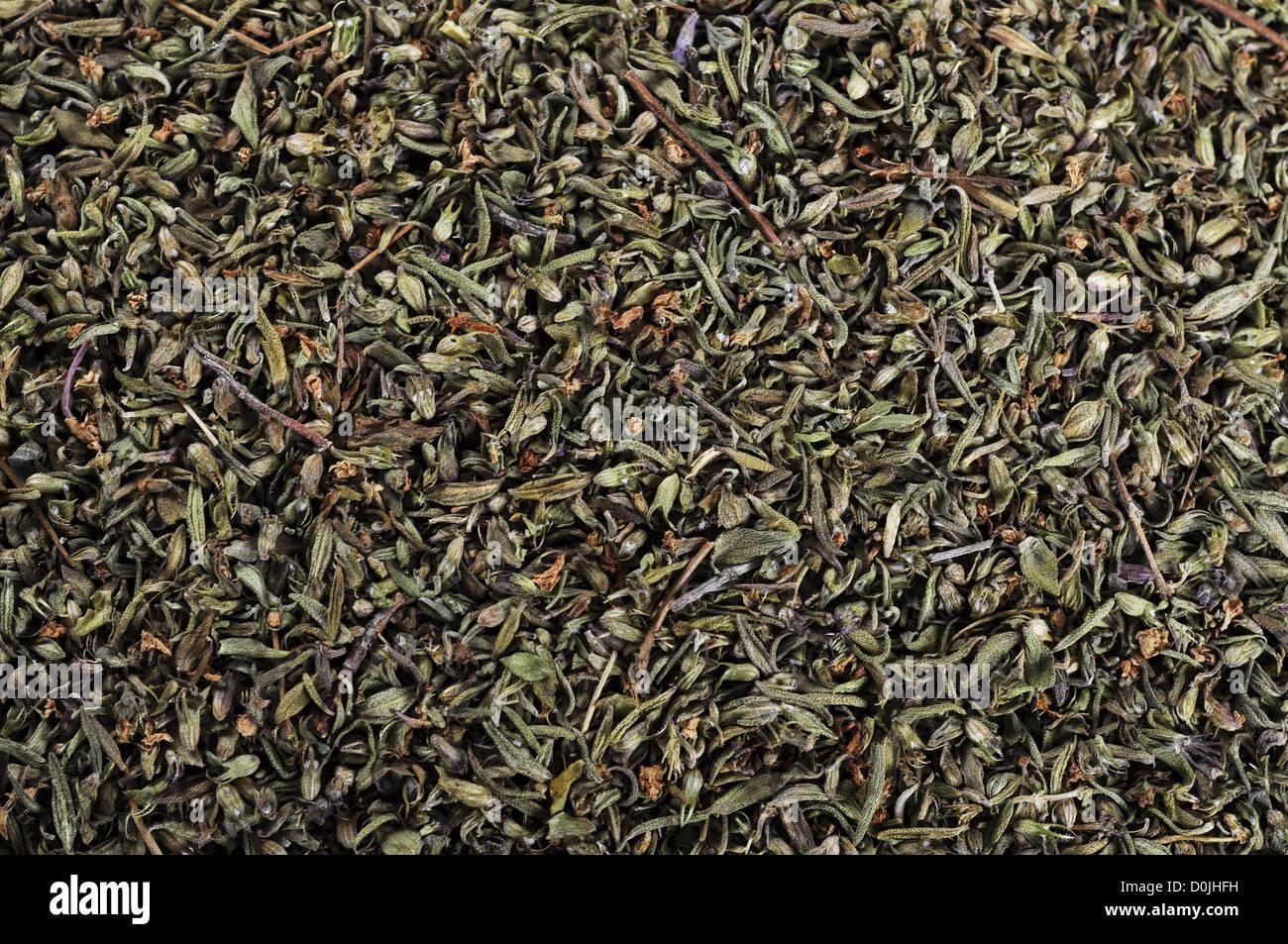 Getrocknetes Bohnenkraut Textur Closeup, können als Hintergrund verwendet Stockbild