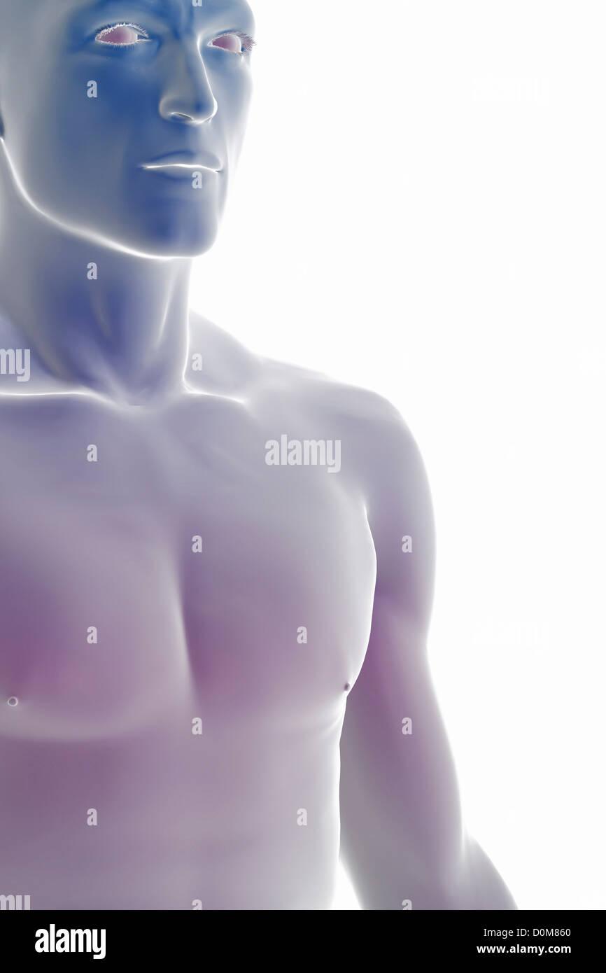 Wunderbar Oberflächenanatomie Auge Bilder - Menschliche Anatomie ...