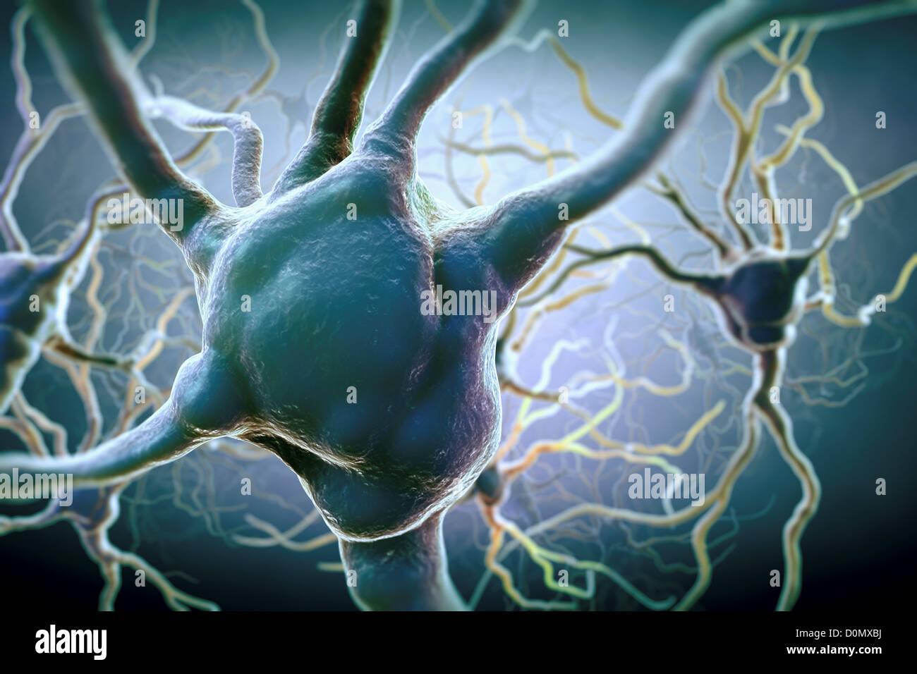 Neuronen und Erweiterungen zu anderen Neuronen verbinden. Stockbild