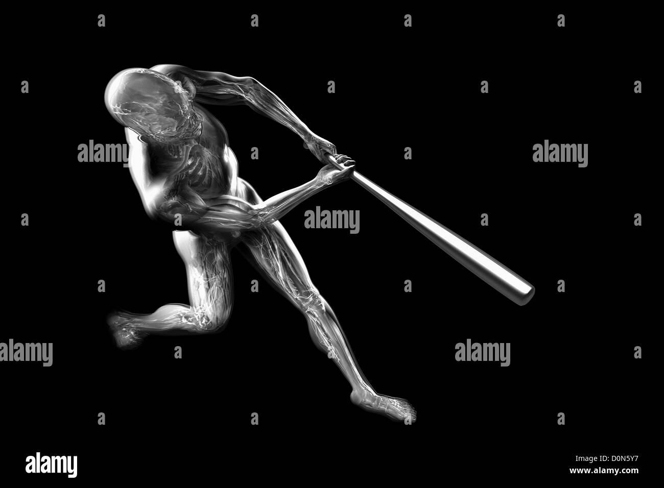 Ziemlich Anatomie Und Physiologie Sichtbar Körper Bilder ...