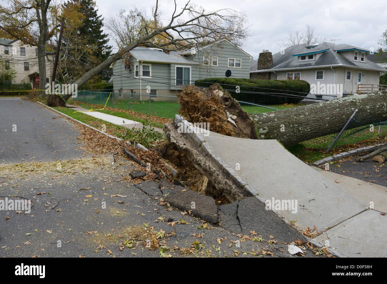 Zerstörung, Häuser, Bäume und Stromleitungen verursacht durch Hurrikan Sandy, Norden von New Jersey Stockbild
