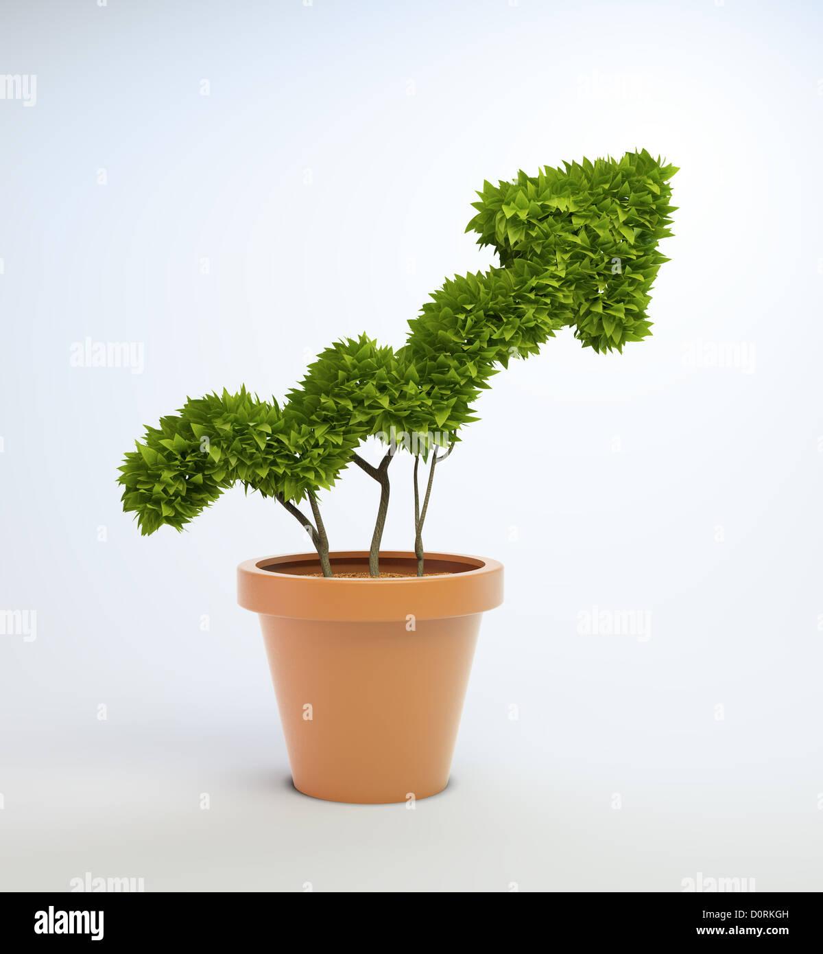 Kübelpflanze, geformt wie ein Diagramm Stockbild