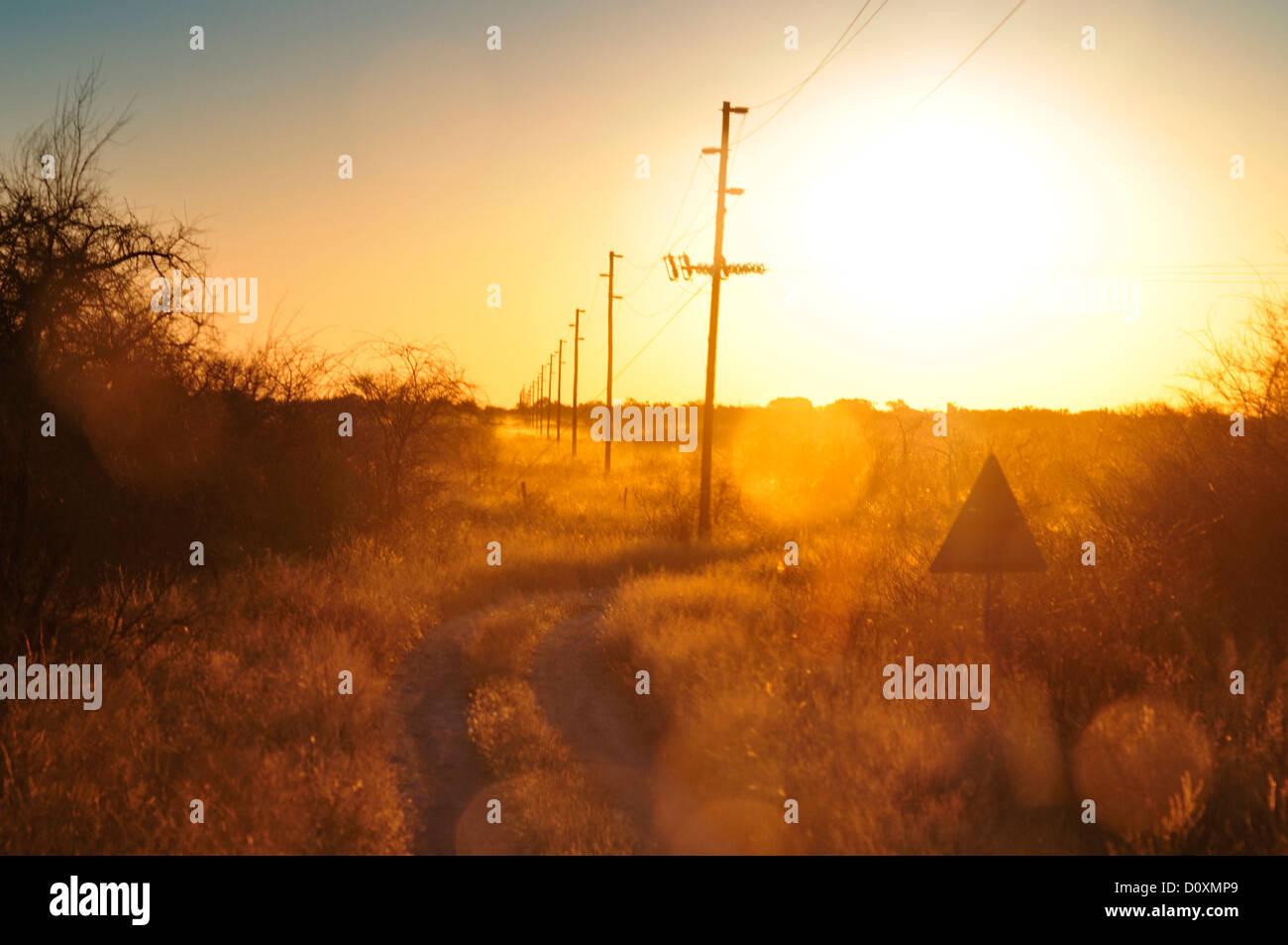 Afrika, Namibia, Warm, Clan, Abenddämmerung, Elektrik, Kabel, Feld, Hochspannung, horizontal Stockbild