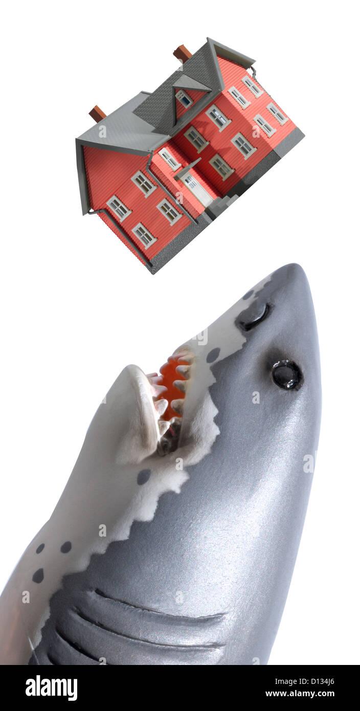 Der weiße Hai zu ein rotes Haus Essen Stockbild
