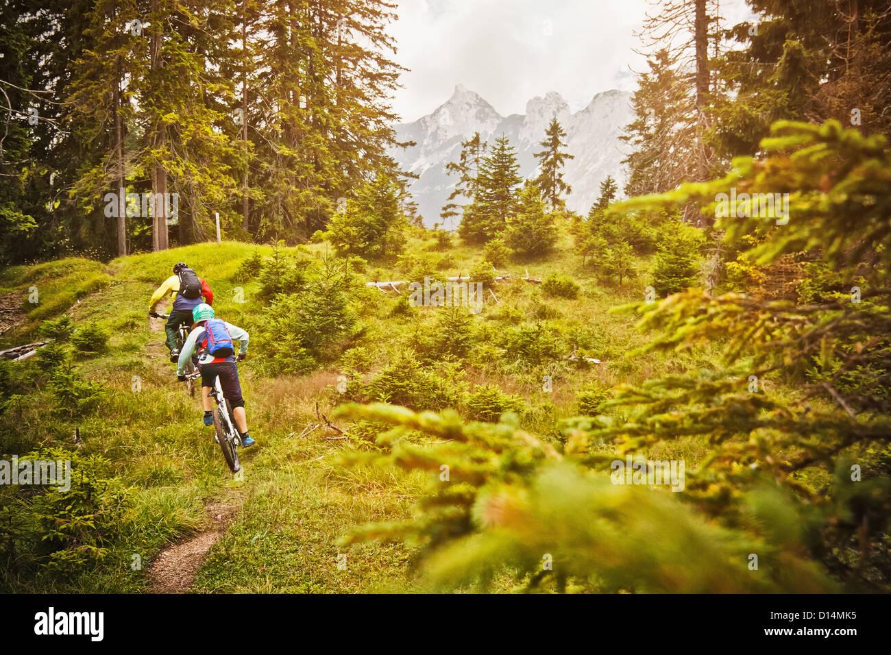 Menschen auf Fahrrädern auf Feldweg Stockbild