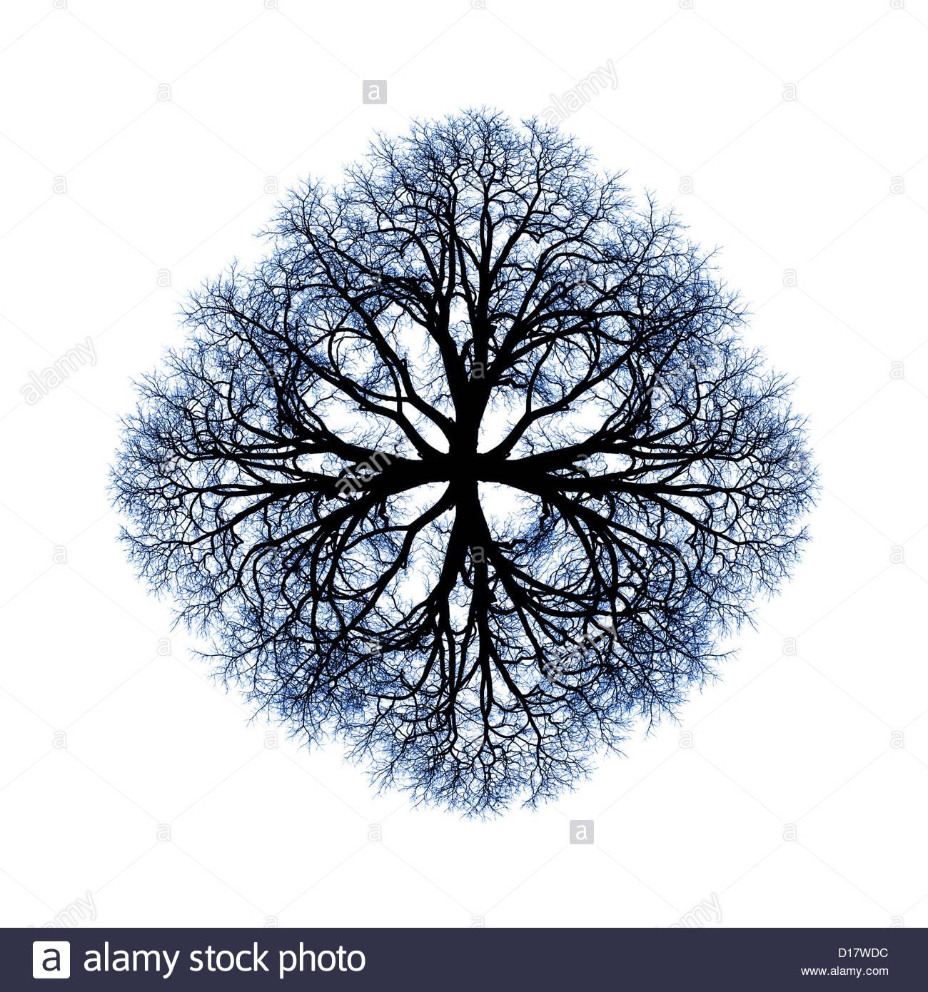 Ein Baum Mandala nützlich für die Meditation über die Natur der Dinge. Stockbild
