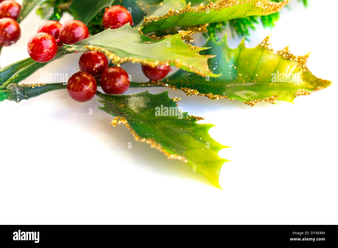 holly berry pflanze mit roten beeren auf wei em hintergrund weihnachtsdekoration stockfoto. Black Bedroom Furniture Sets. Home Design Ideas