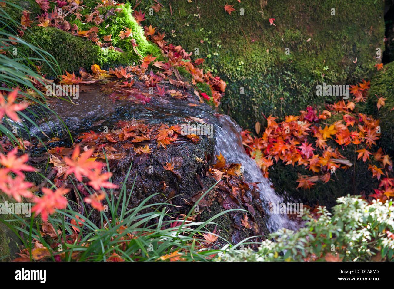 Kleiner Wasserfall in einem alten japanischen Garten in Nikko, Japan ...