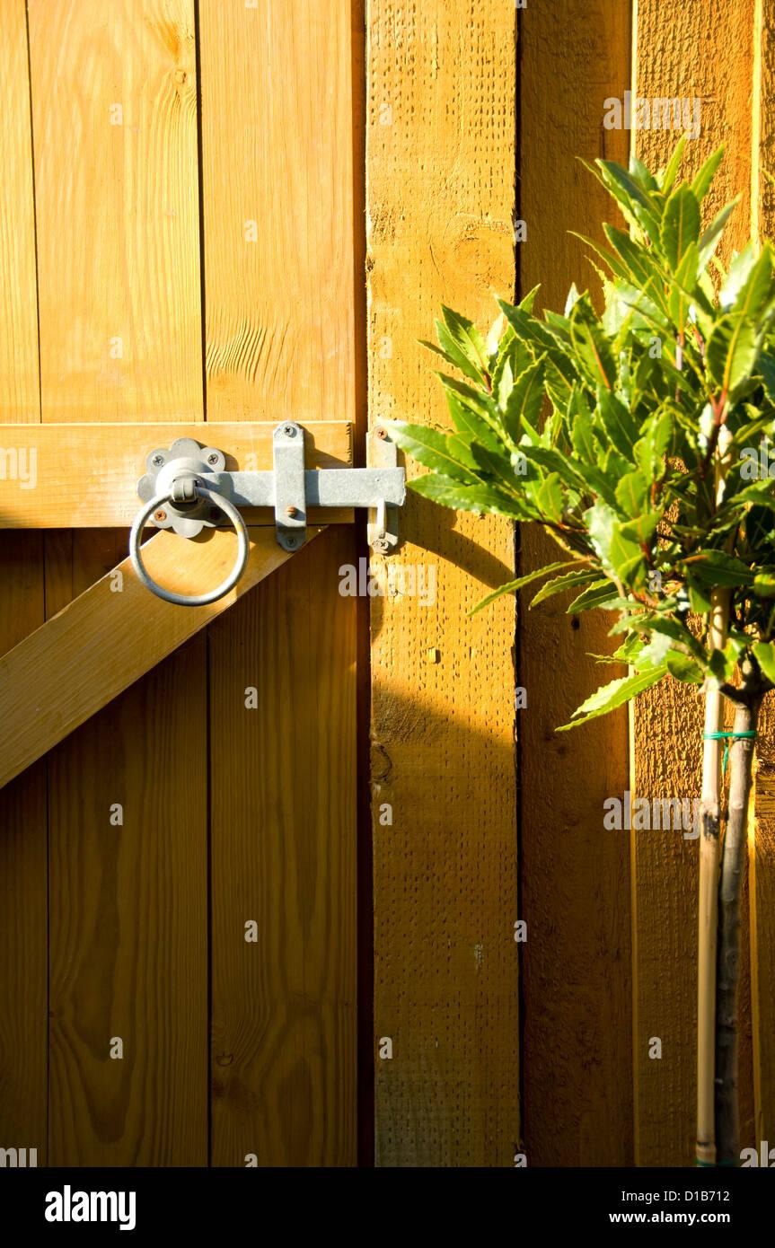 gartentor, riegel und lorbeerbaum stockfoto, bild: 52492750 - alamy