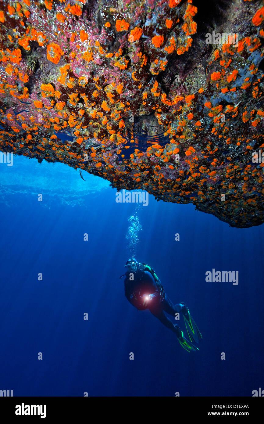 Taucher in die Blaue Grotte, Mittelmeer in der Nähe von Gozo, Malta, unter Wasser geschossen Stockbild