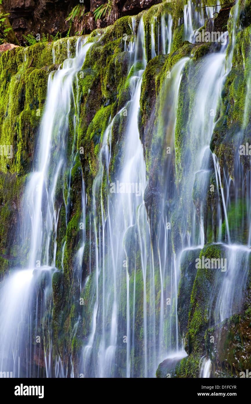 Wasserfall, Brecon Beacons, Wales, Vereinigtes Königreich, Europa Stockbild