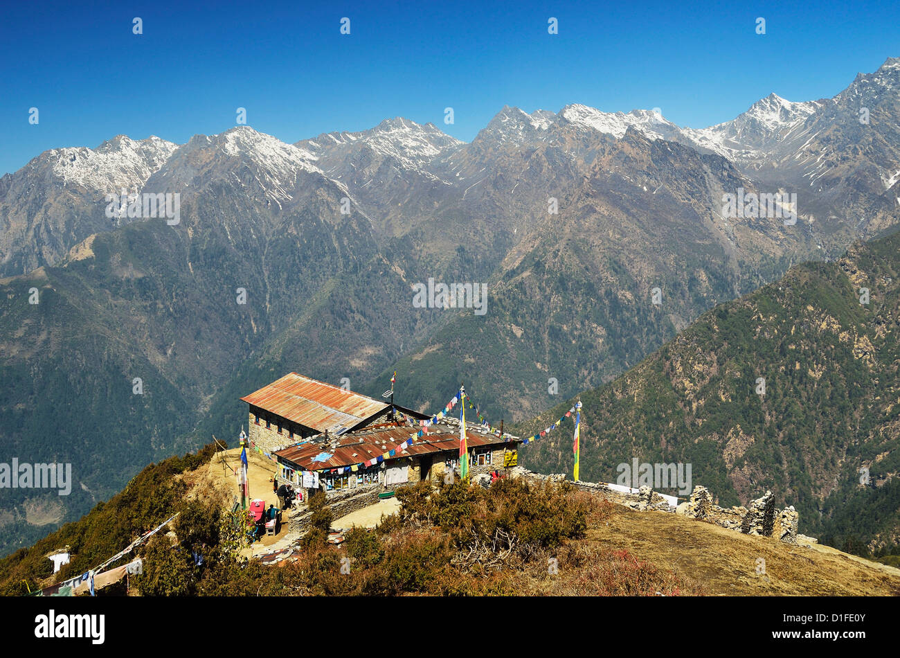 Blick auf Langtang-Gebirge, Langtang Nationalpark, Bagmati, Central Region (Madhyamanchal), Nepal, Himalaya, Asien Stockbild