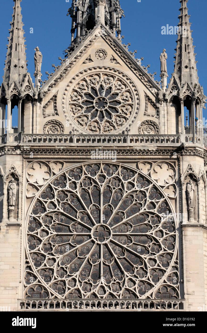Südliche Fassade von Notre-Dame de Paris Kathedrale, Paris, Frankreich, Europa Stockfoto