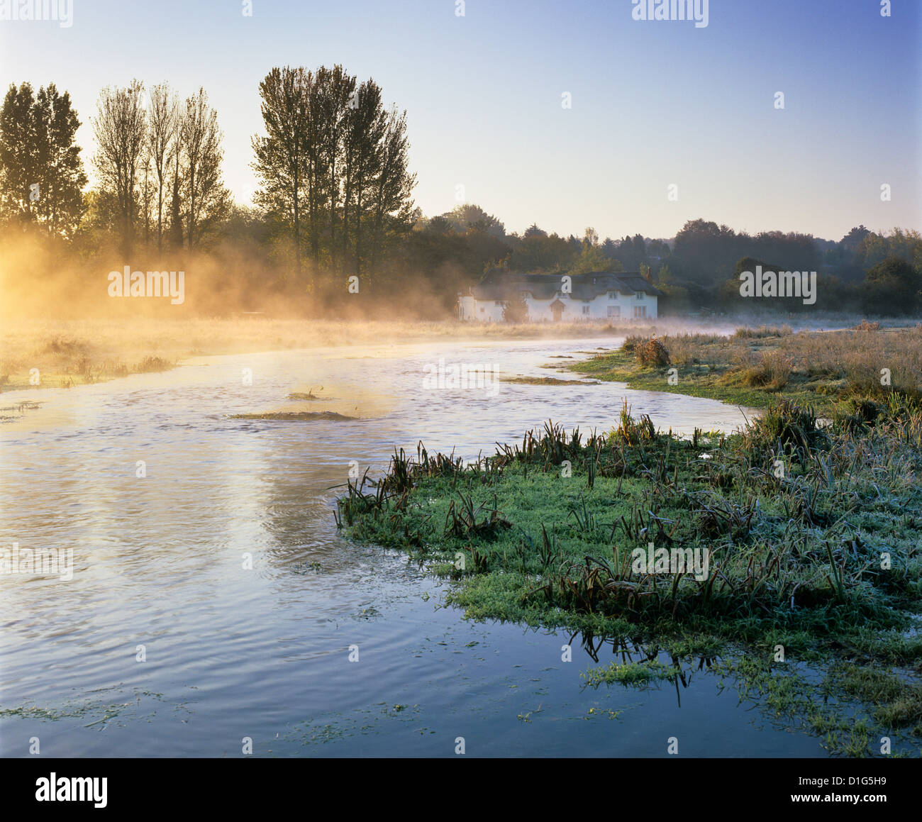 Misty River Test auf Chilbolton Common, Wherwell, Hampshire, England, Vereinigtes Königreich, Europa Stockbild