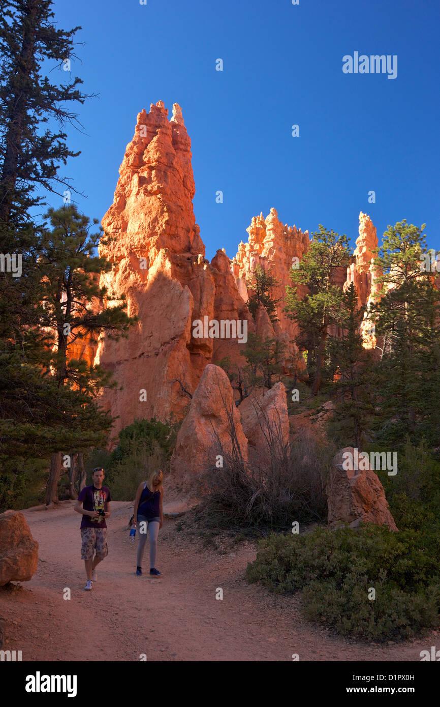Wanderer auf dem Navajo Loop Trail, Bryce-Canyon-Nationalpark, Utah, USA Stockbild