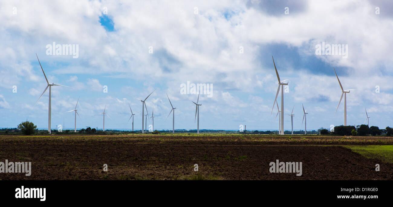 PONCE, PUERTO RICO - Windmühlen, die Erzeugung von Strom aus Windkraft, an der Südküste in der Nähe Stockbild