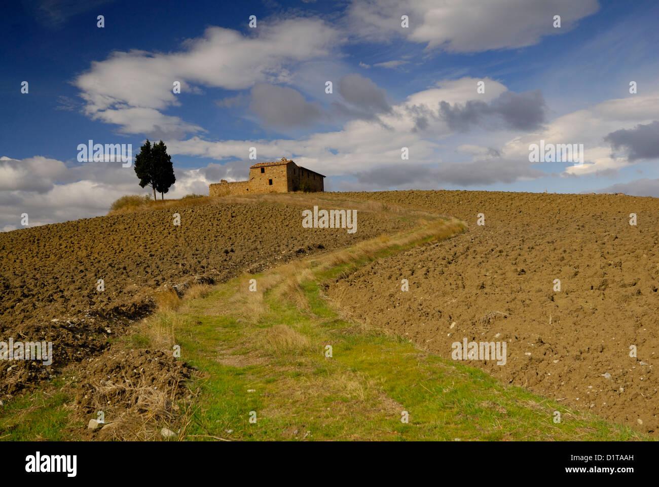 Val d ' Orcia Landschaften, Pienza, Siena, Toskana, Italien Stockbild