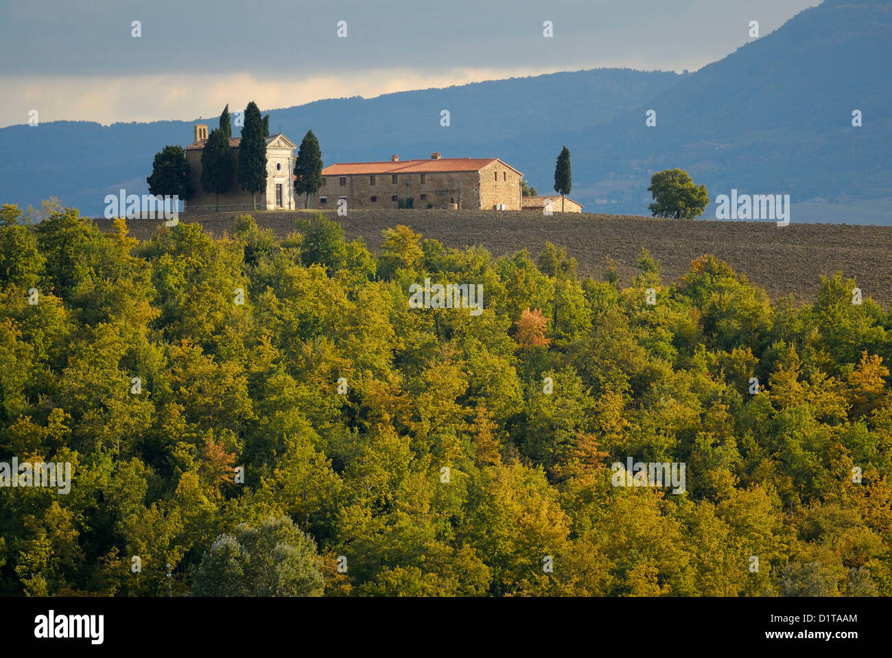 Vitaleta kleine Kirche, San Quirico d ' Orcia Val d ' Orcia Landschaften, Siena, Toskana, Italien Stockbild