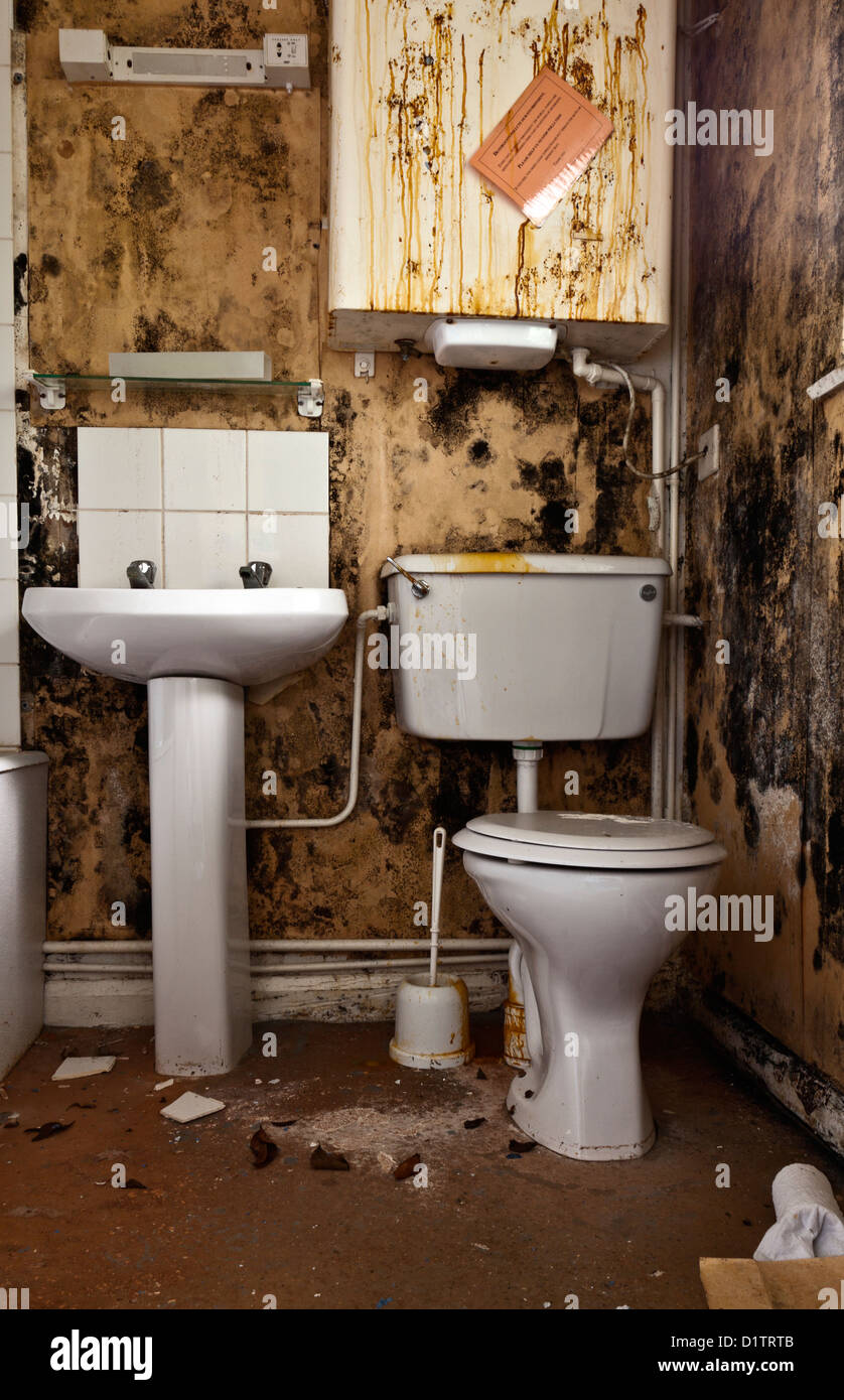 Ein schmutziges Badezimmer mit Moudly Wänden Stockfotografie - Alamy