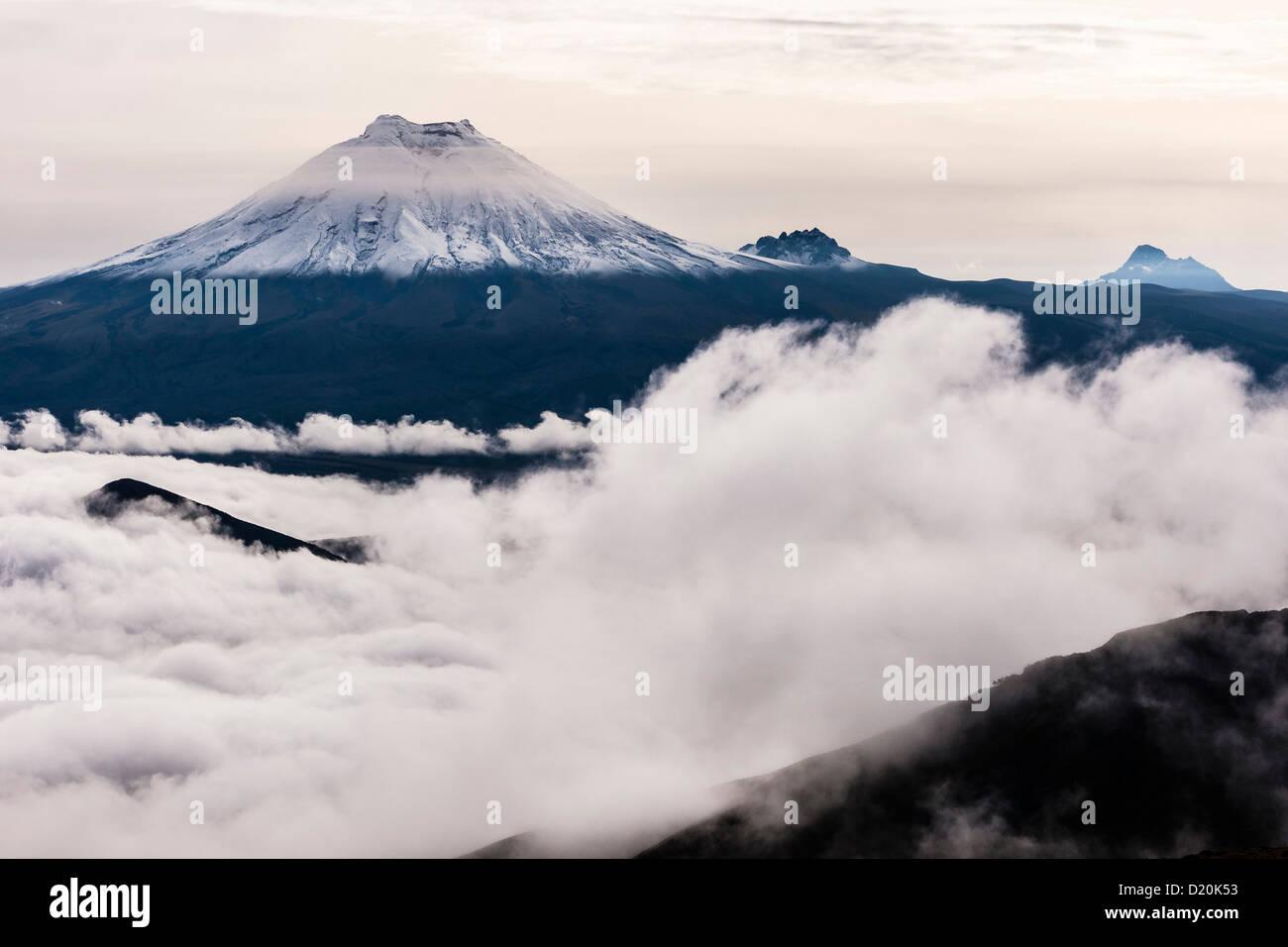 Vulkan Cotopaxi über Wolken, gesehen vom Los Illinizas, Ecuador, Südamerika Stockbild