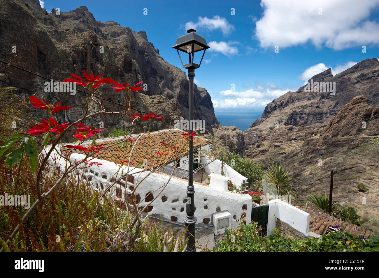 Berg Dorf Masca im Teno Gebirge, Teneriffa, Kanarische Inseln, Spanien, Europa Stockbild