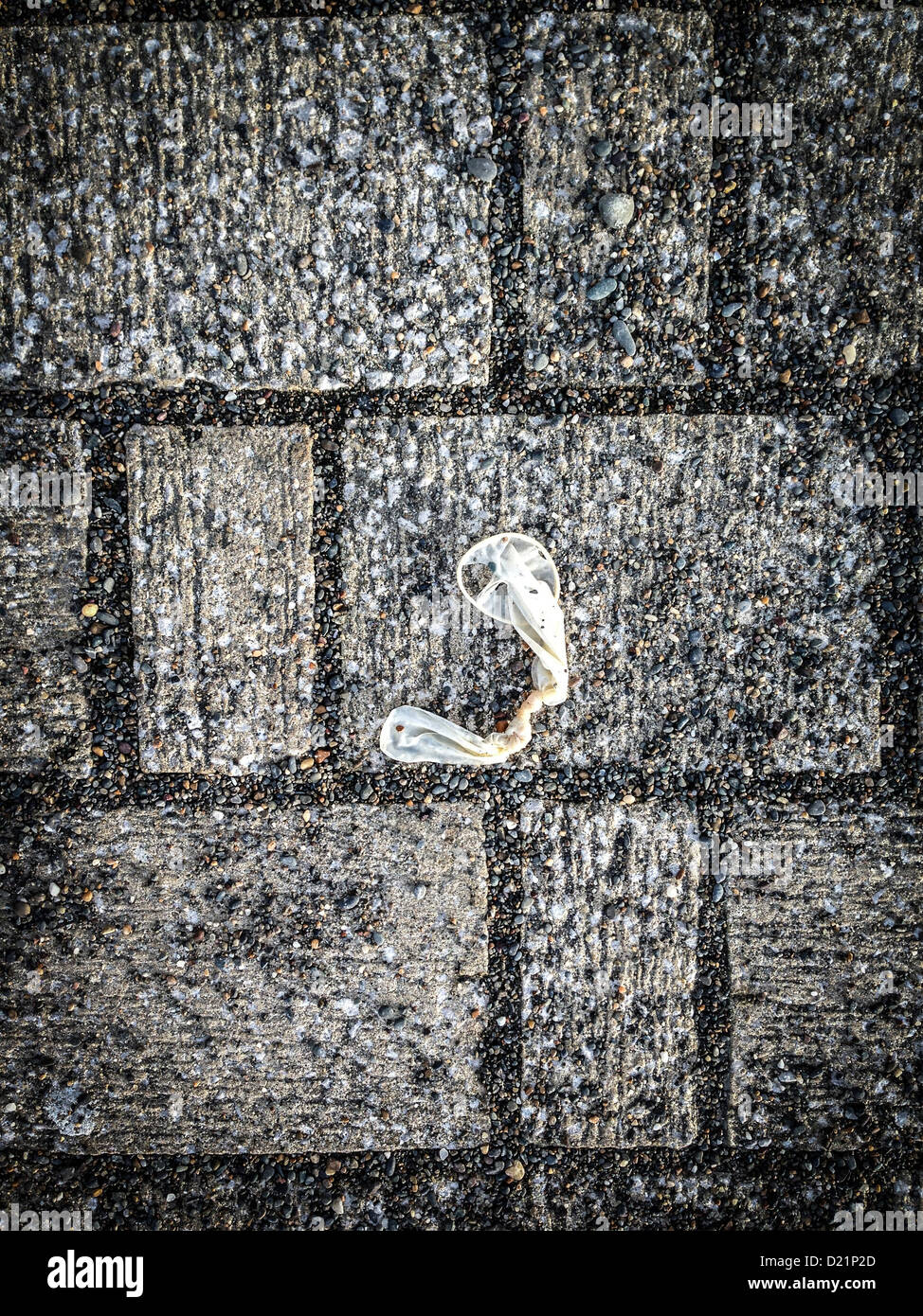 Condom Condom Stockfotos & Condom Condom Bilder - Alamy