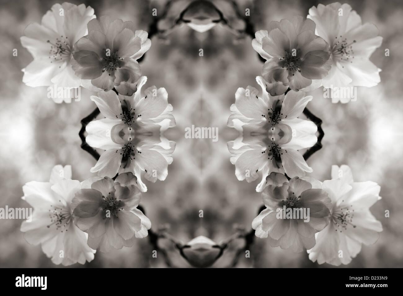 Kaleidoskopische Blumenmuster Stockbild