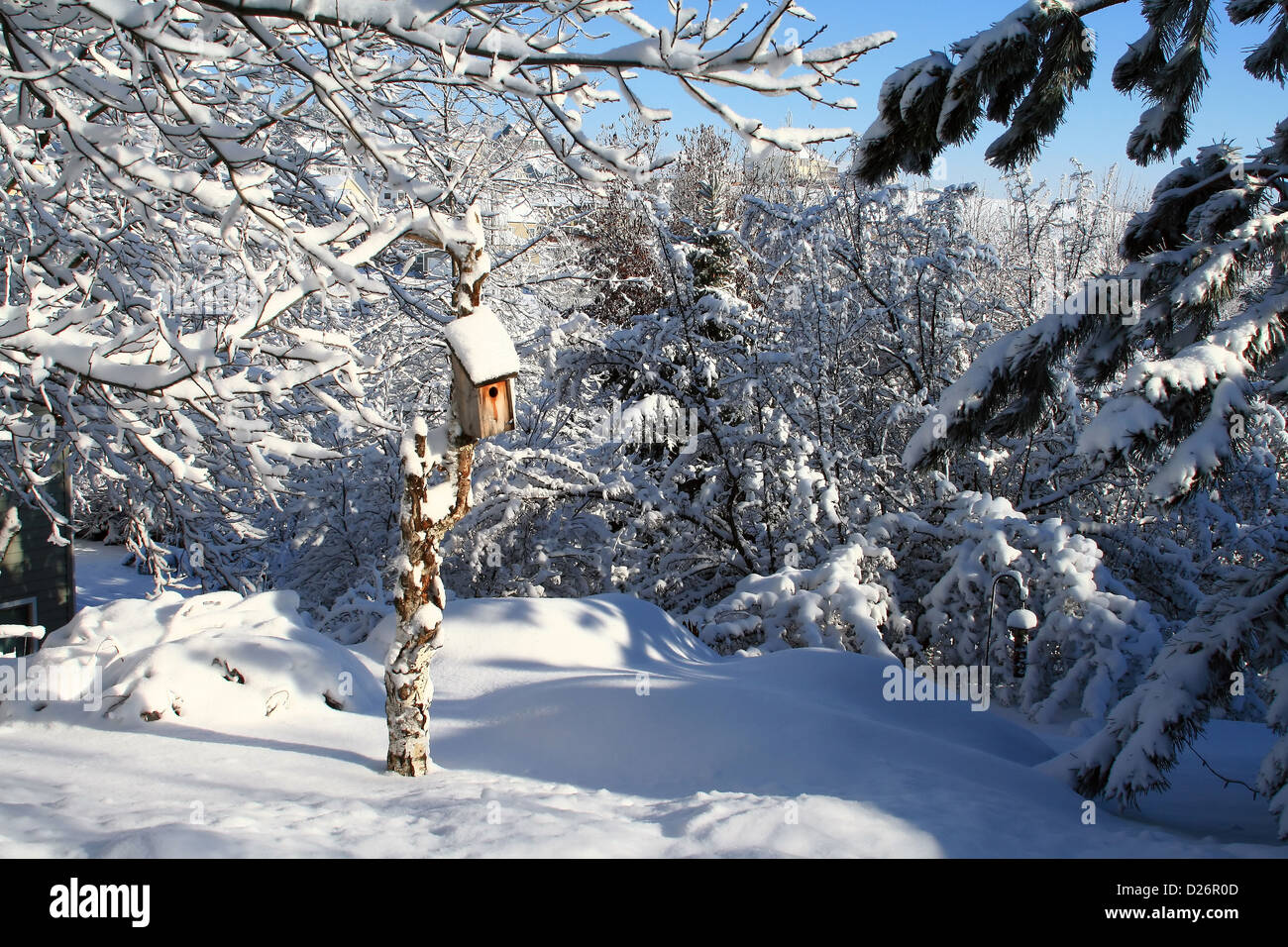 birdhouse winter stockfotos birdhouse winter bilder alamy. Black Bedroom Furniture Sets. Home Design Ideas