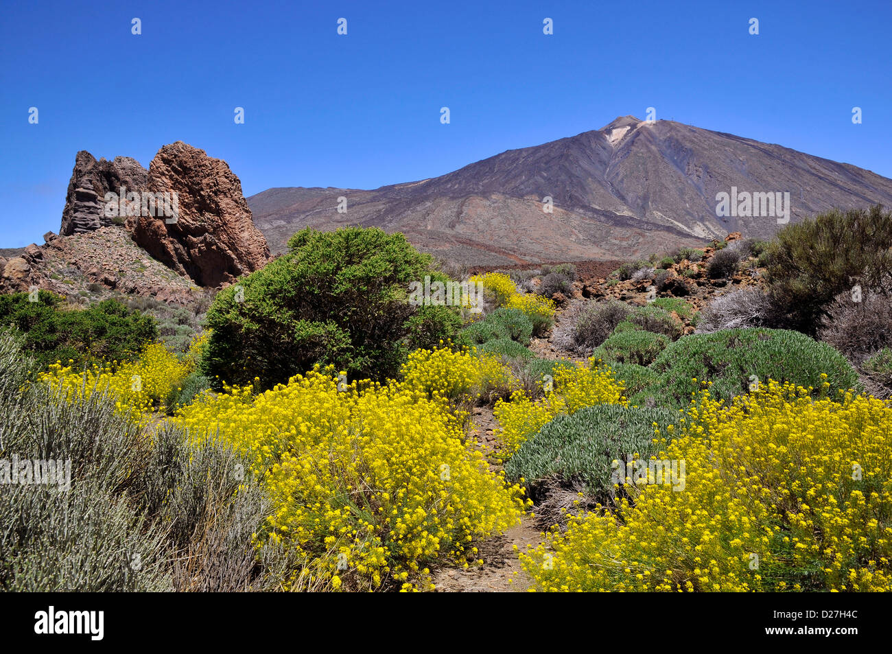 Mount Teide oder im spanischen Pico del Teide (3718m), ist ein Vulkan auf Teneriffa in die spanischen Kanarischen Stockbild