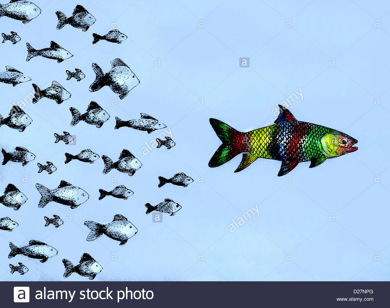 Kleine Fische, die nach großen bunten Fischen Stockbild