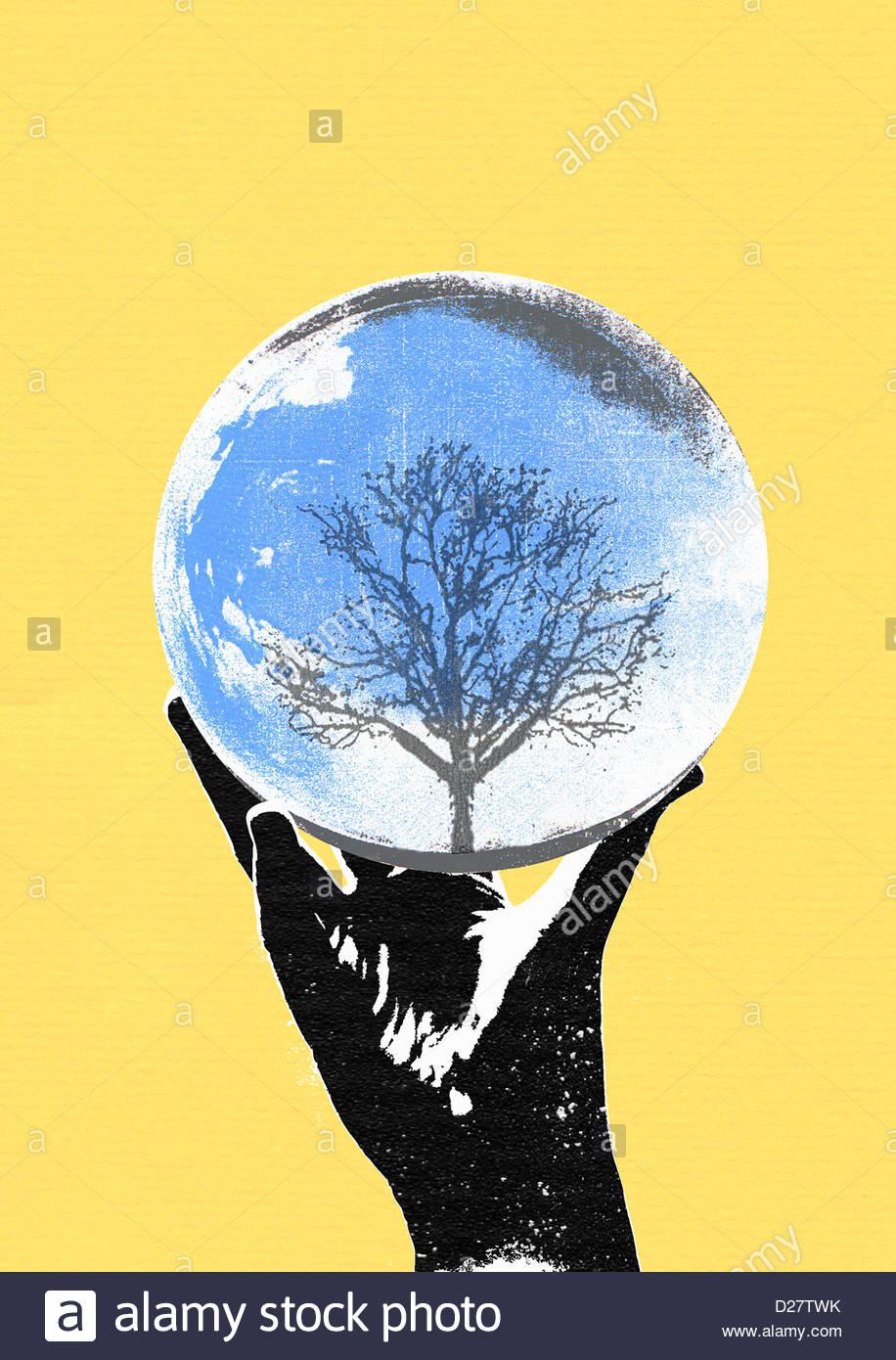 Hand, die Kristallkugel mit Baum Stockbild
