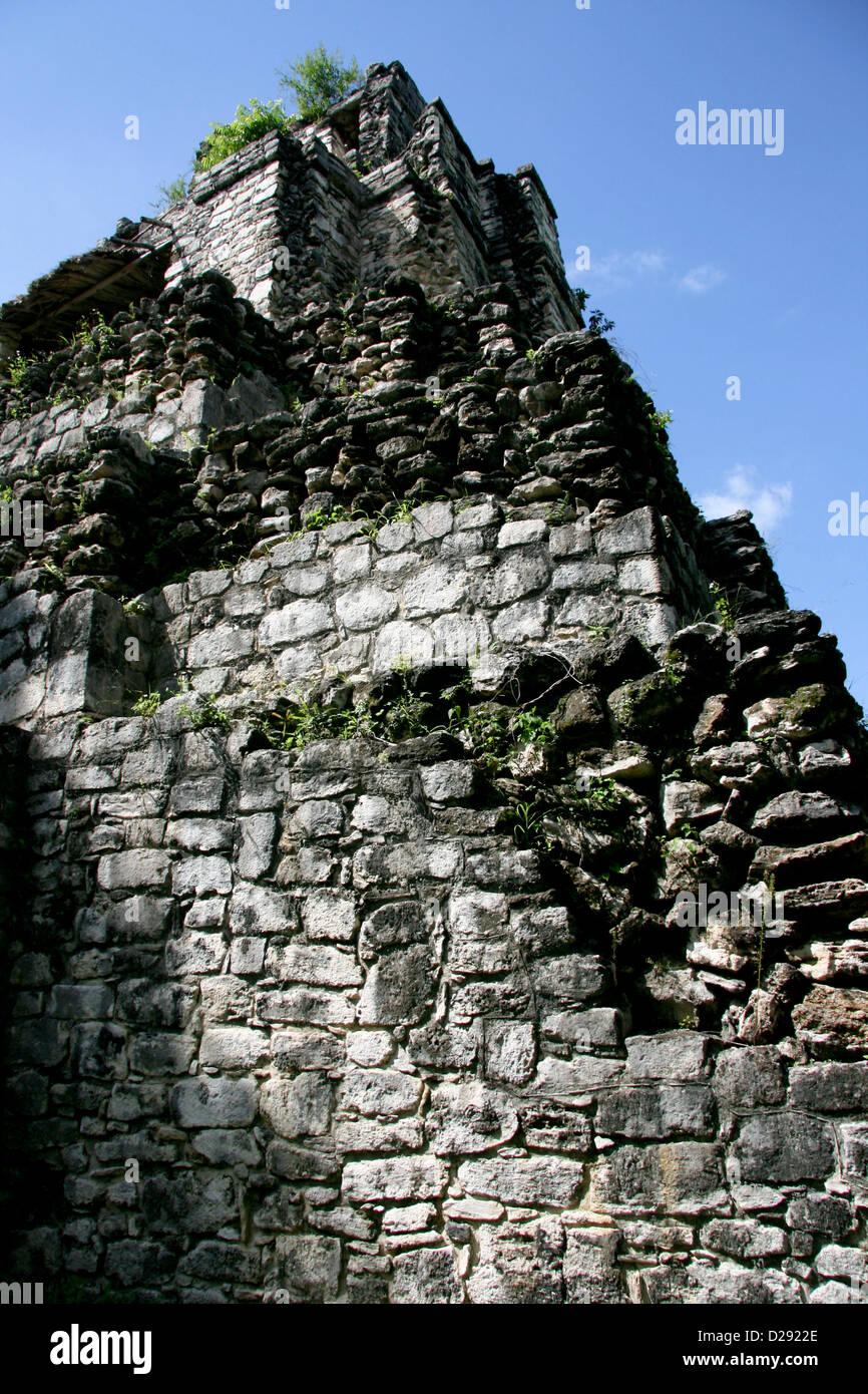 Sian Ka Biosphäre, Muyil Maya-Tempel In Quintana Roo. Mexiko Stockbild