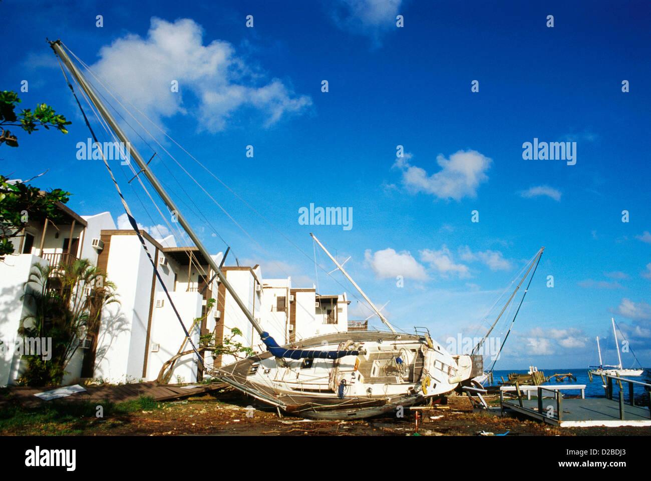 St. Croix, Us Virgin Islands. Schäden durch Hurrikan Marilyn. Stockbild