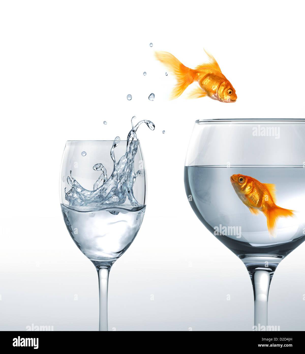 Springender Goldfisch Kunstwerk Stockbild