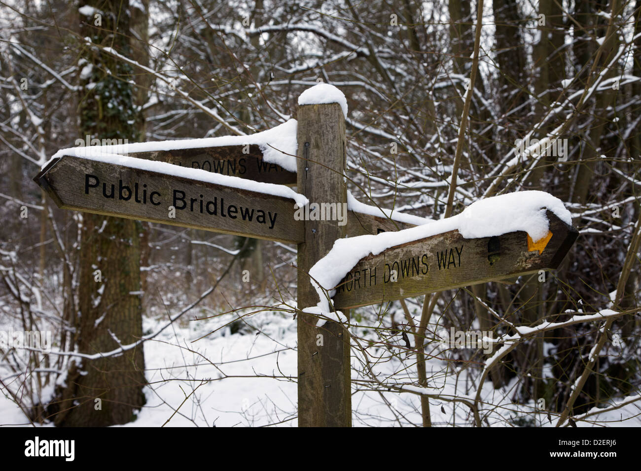 North Downs Way Wegweiser in Ashcombe Wood, in der Nähe von Dorking, Surrey, England. Stockbild