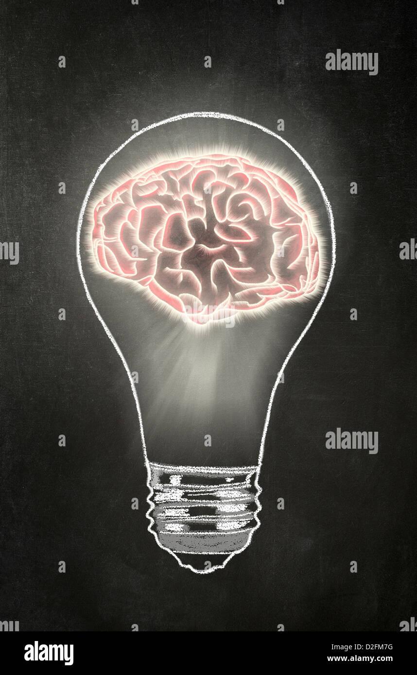 Idee - Glühbirne mit einem menschlichen Gehirn drin auf einer Tafel Stockbild