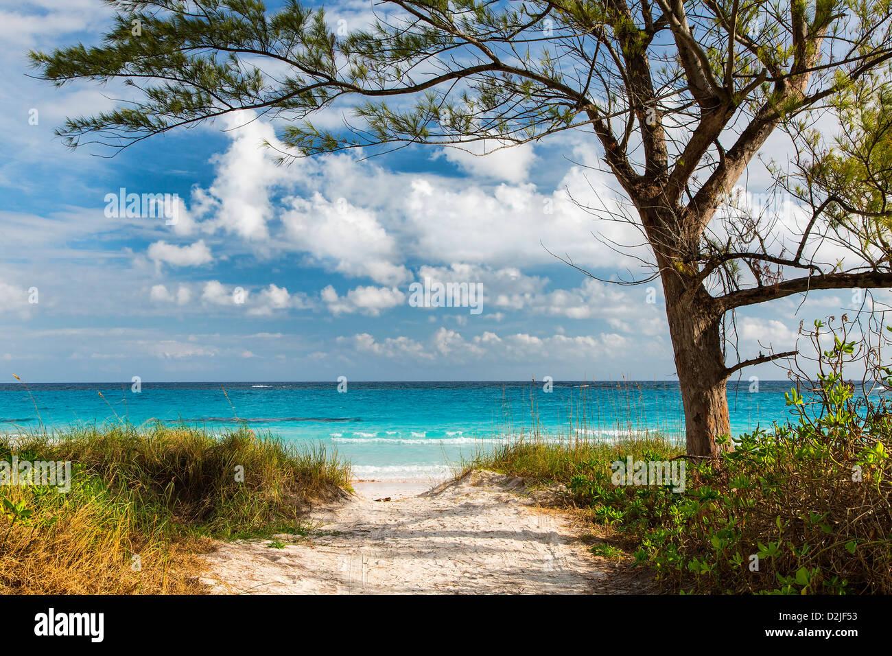Bahamas, Eleuthera Insel Club Med Strand Stockbild