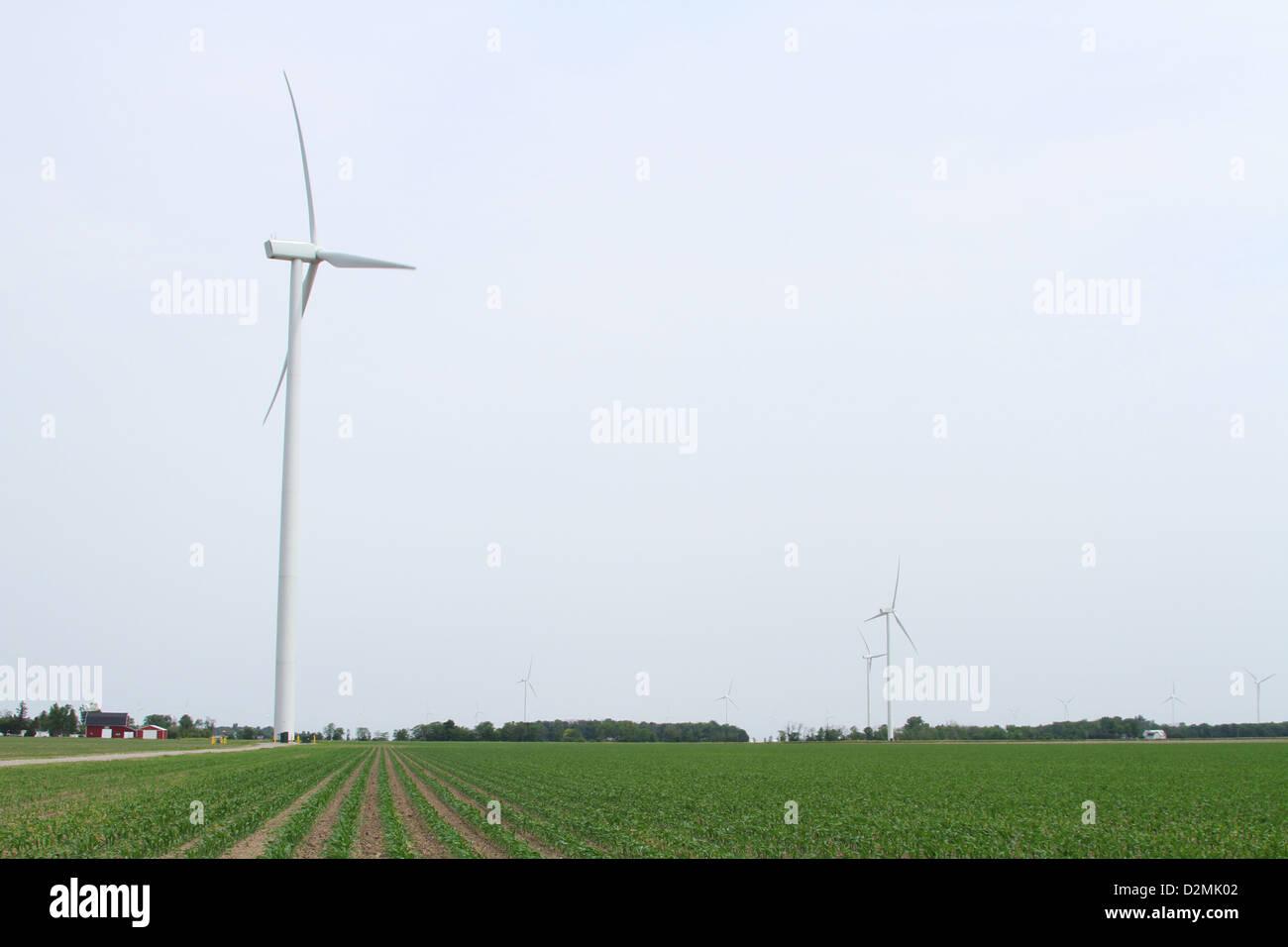 Windmühle für die Erzeugung elektrischer Energie. In der Nähe von Van Wert, Ohio, USA. Eine Windmühle Stockbild