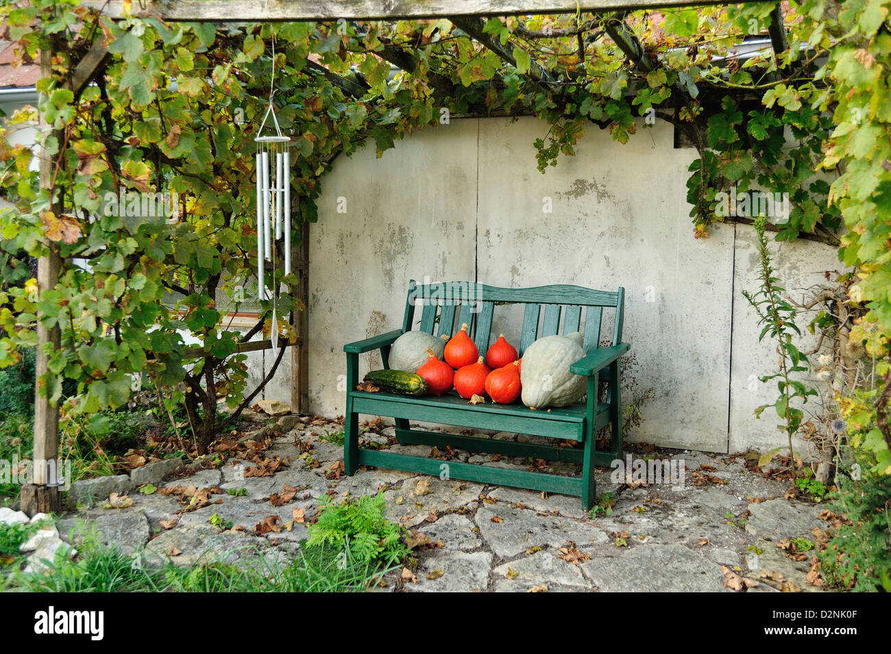 gartenpflanzen stockfotos gartenpflanzen bilder alamy. Black Bedroom Furniture Sets. Home Design Ideas