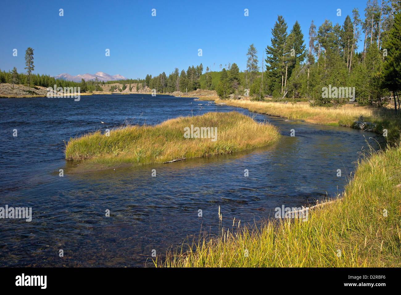Madison River Valley in der Nähe von Madison, Yellowstone-Nationalpark, Wyoming, USA Stockbild